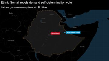 Rebels in Eastern Ethiopia to Seek Self-Determination Vote