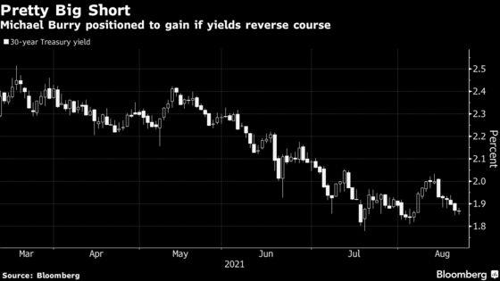 Michael Burry's Pretty Big Short Hinges on Treasuries Sinking