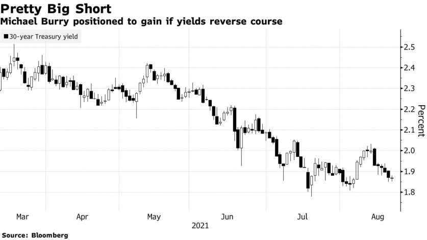 Michael Burry positioned to gain if yields reverse course