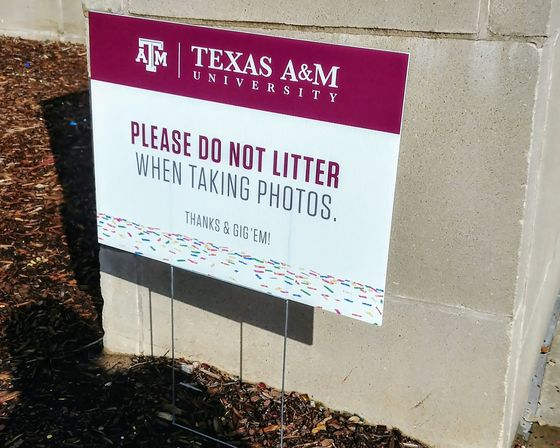 Glitter Is Litter Campaign Hits Class of '19
