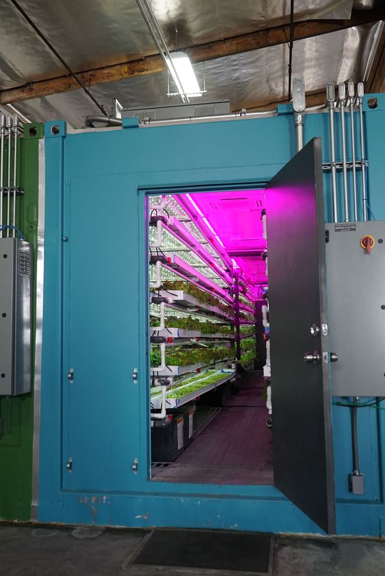 These Shipping Containers Have Farms Inside