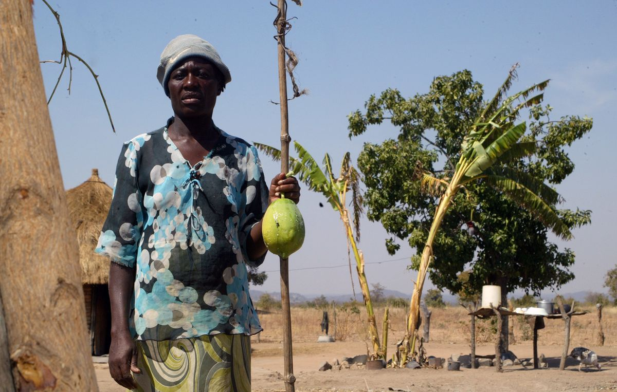 Southern Africa Has 45 Million People Facing Hunger, UN Says