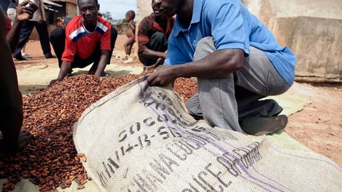 Local farmers gather dried cocoa beans to be weighed before selling them to merchants in a village outside of Kumasi, Ghana.
