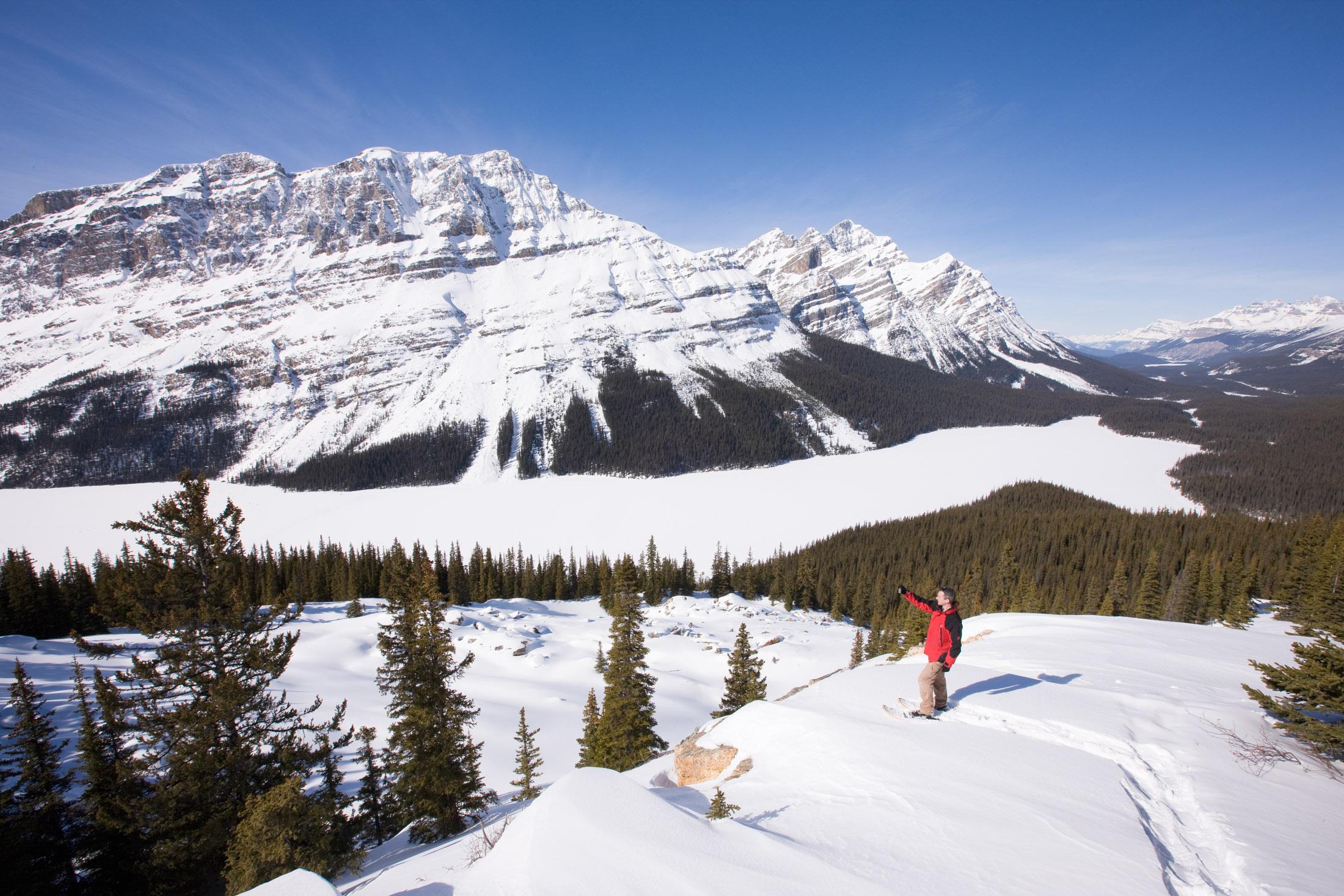 Un skieur photographie le lac Peyto dans le parc national Banff en Alberta.