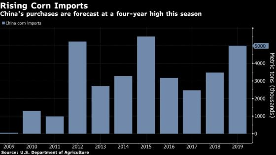 The Latest Sign of a U.S.-China TradeTruce: Corn