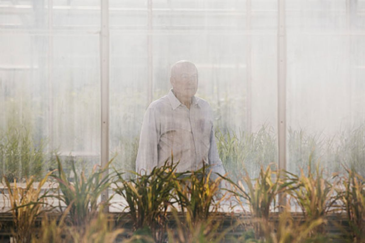 Inside Monsanto, America's Third-Most-Hated Company