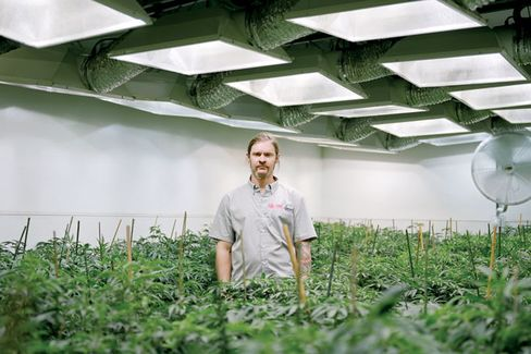 Will the Feds Crack Down on Pot or Look the Other Way?