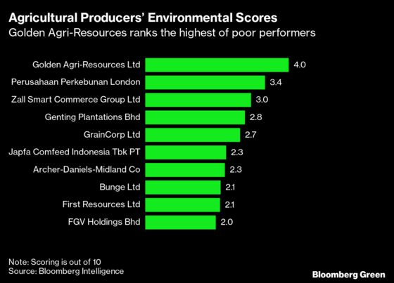 Palm Oil Giant's Industry-Beating ESG Score Hides Razed Forests