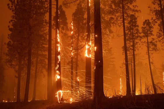 Bone-Dry Nights Make California Fires Spread Faster Than Ever
