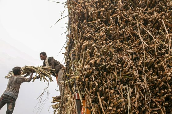 Cars Fueled by Sugar in India Will Add to Food Inflation Risks