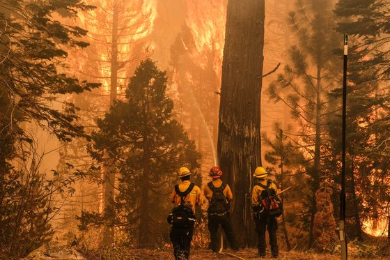 Lake Tahoe's Fire Peril Casts Pall on a Remote-Work Paradise