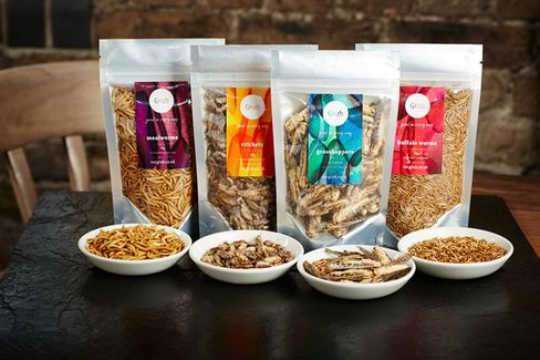 Eat Grub is trying to move away from thinking of insects as a novelty food.