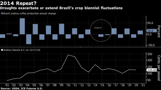 Brazil Drought Damage May Cut High-End Coffee Crop for Two Years
