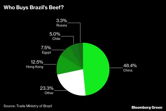 Why It's So Hard to Stop Amazon Deforestation, Starting With the Beef Industry