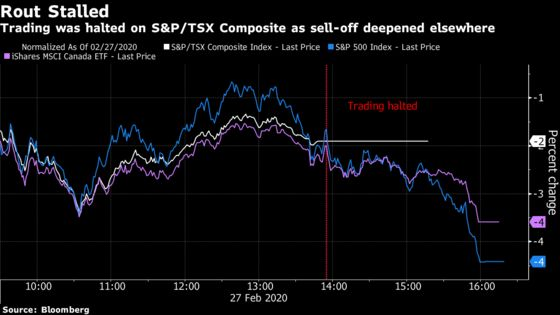 Welcome Back, Toronto Traders, After You Missed Brutal Sell-Off