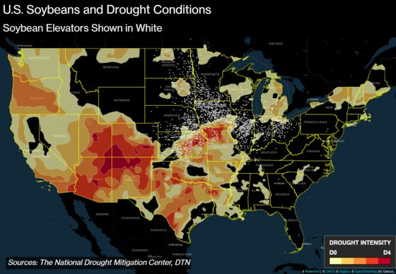 Extreme Drought Conditions Creep Into Soybean States