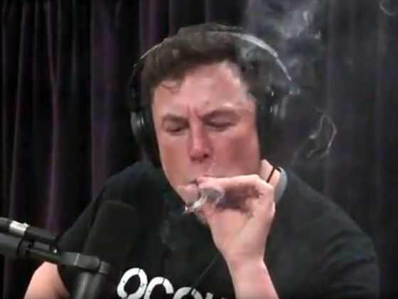 The Question for Elon Musk: Dude, What Are You, High?