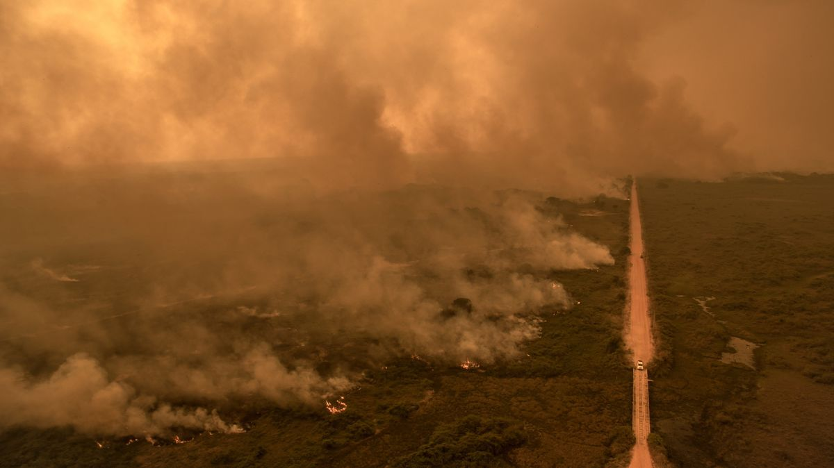 World's Largest Wetland Has Worst October Fires on Record