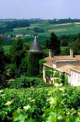 Bordeaux Superieur Vineyards