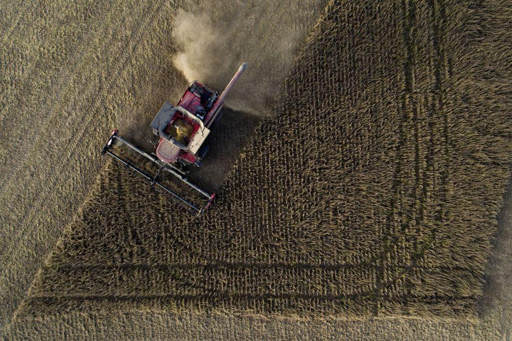 Trump Administration Has No Plans to Help Farmers With the Trade War in 2019