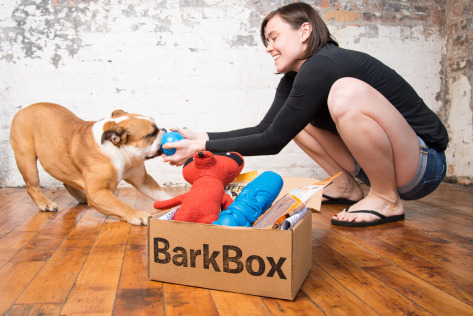 BarkBox is becoming a more traditional retailer.