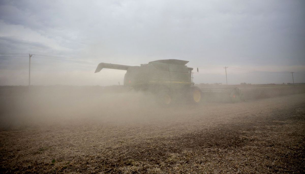 Soybeans Sink as China Hikes Tariffs on American Farm Products