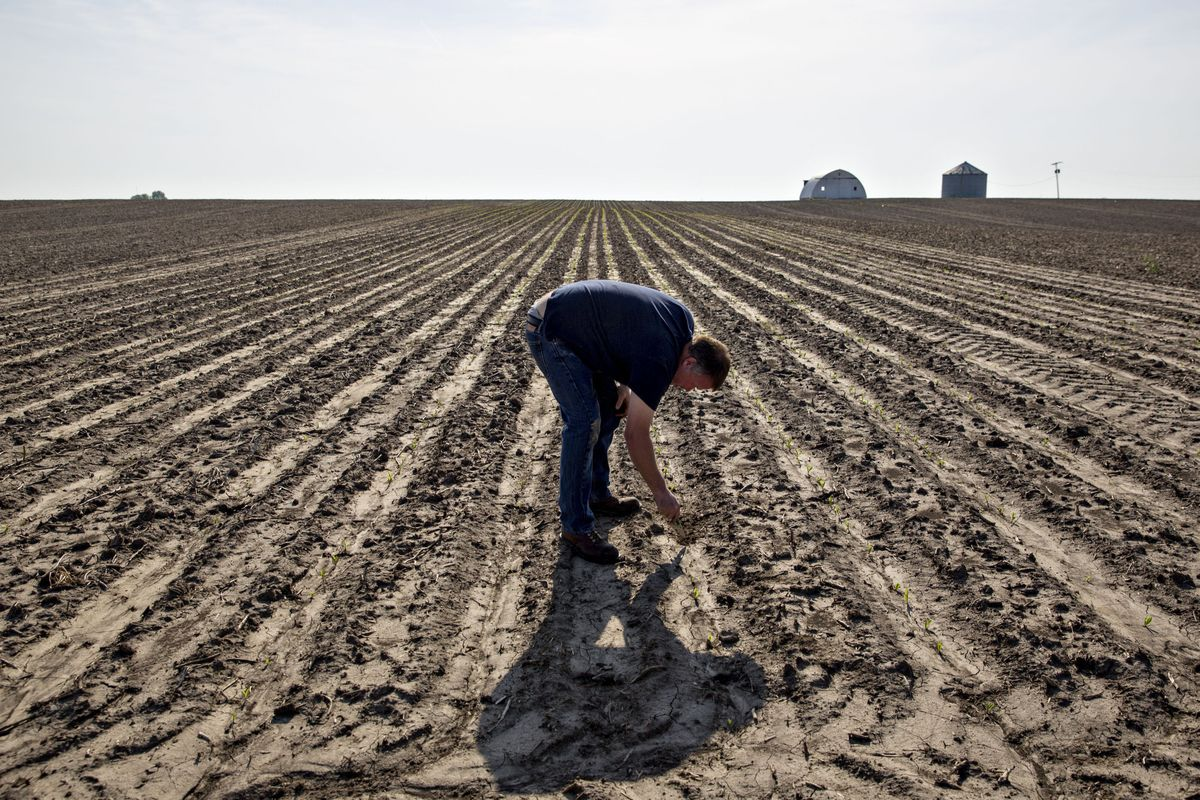 Trump's $16 Billion Farmer Trade Aid Package Leaves Few Happy