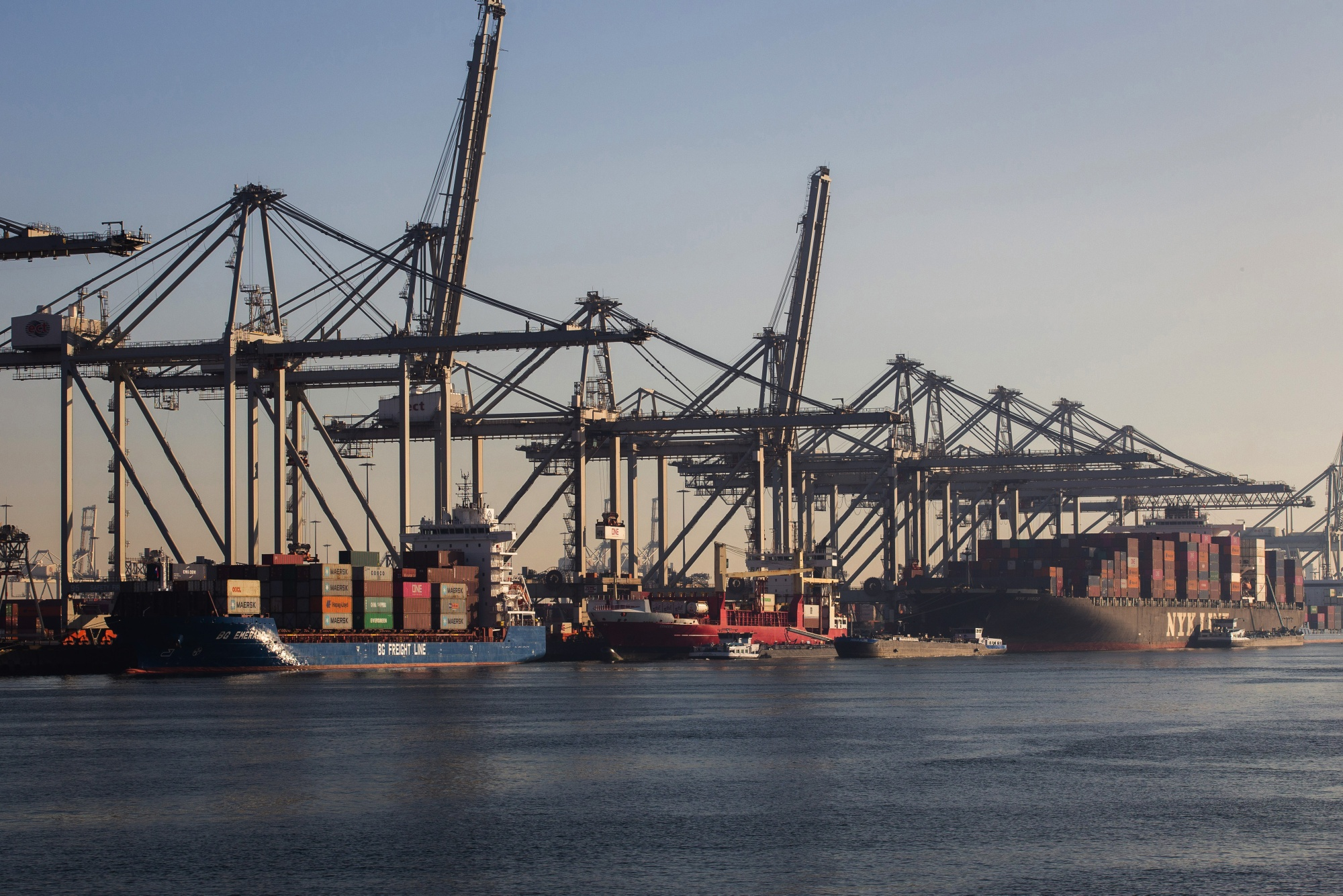Container Shipping Operations at Europe's Largest Port Ahead of Dutch GDP