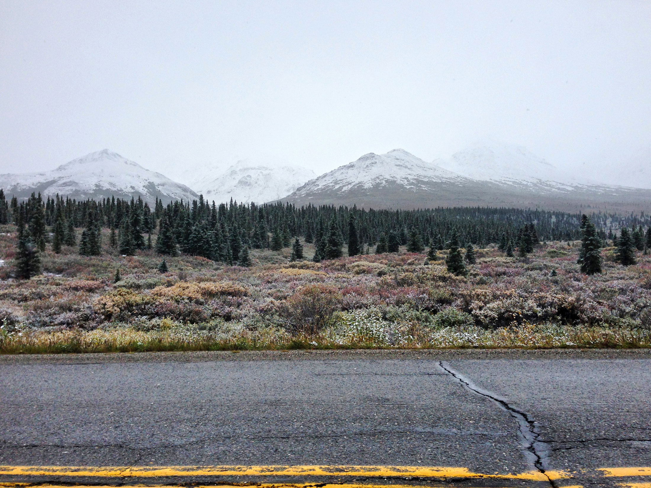 Snowcapped mountains and evergreens along the Alaska Highway.