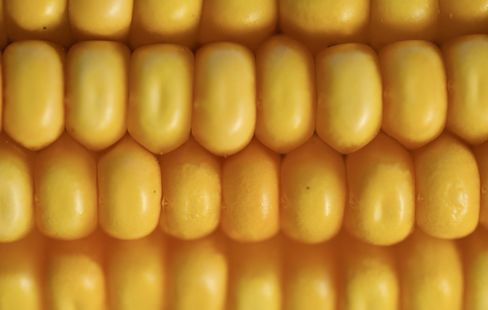 Corn May Reach Record on Supply 'Nervousness,'