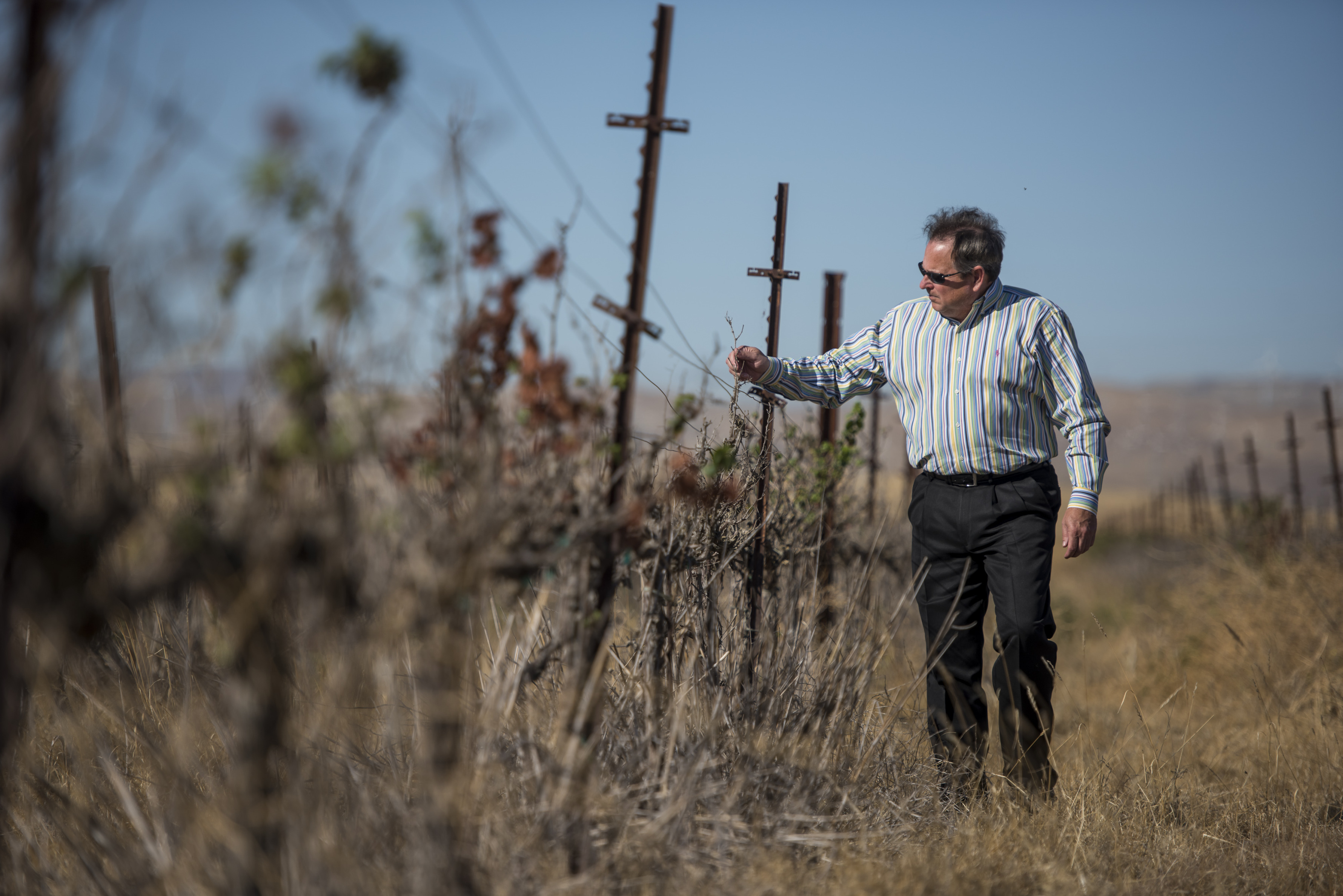 California Farmers Fight for Century-Old Claims to Water - Bloomberg