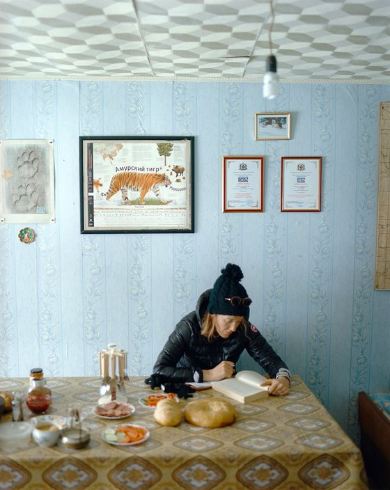 A Journey Into Siberia, a Wilderness of Tigers, and Lost Pianos