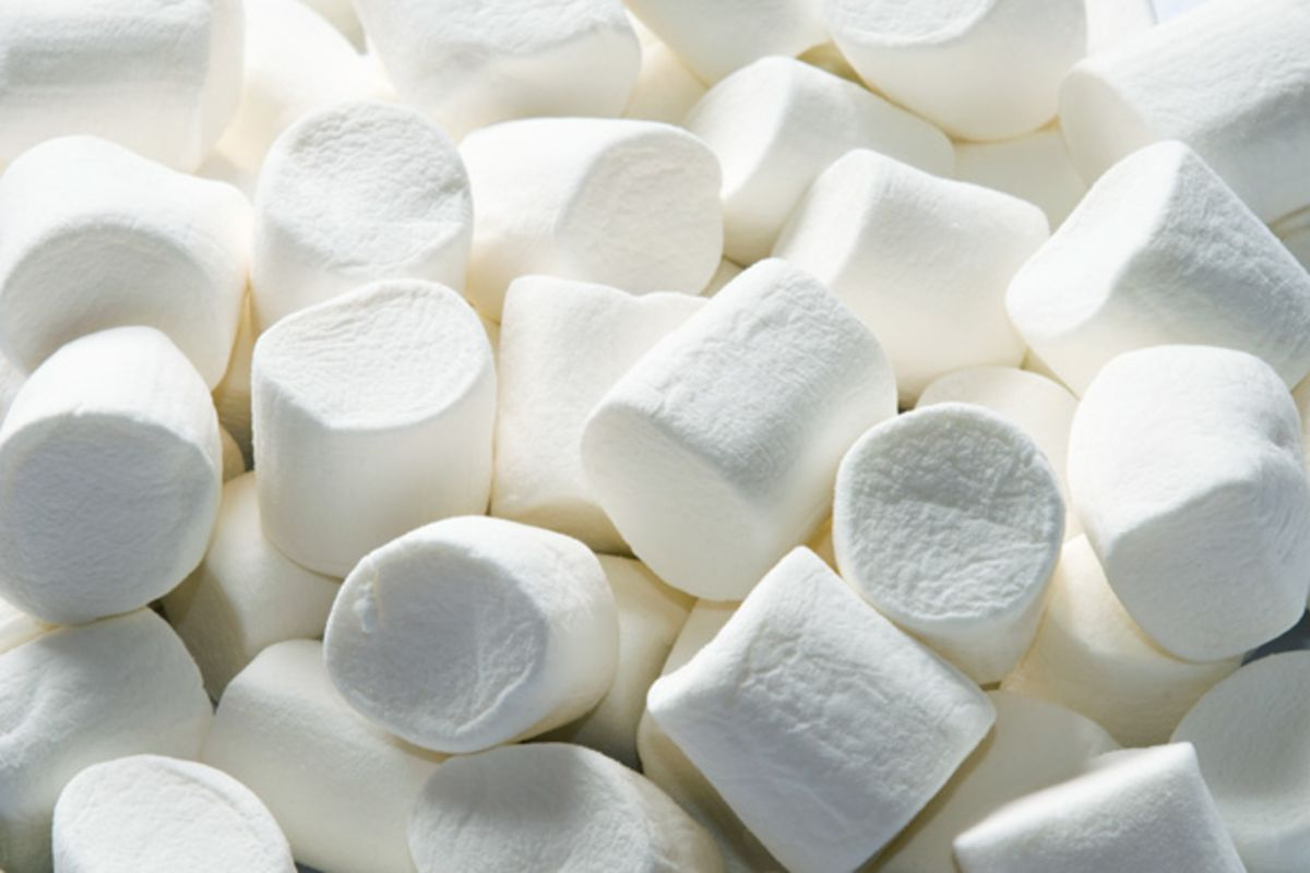 What Does The Marshmallow Test Actually Test Bloomberg
