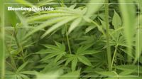 relates to CBD Primed for Takeoff in China