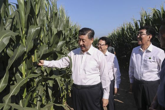 What Trade War? Trump Heartland Sees Record Farm Sales to China