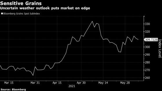 'Every Bushel Matters' as Drought Keeps Crop Markets on Edge