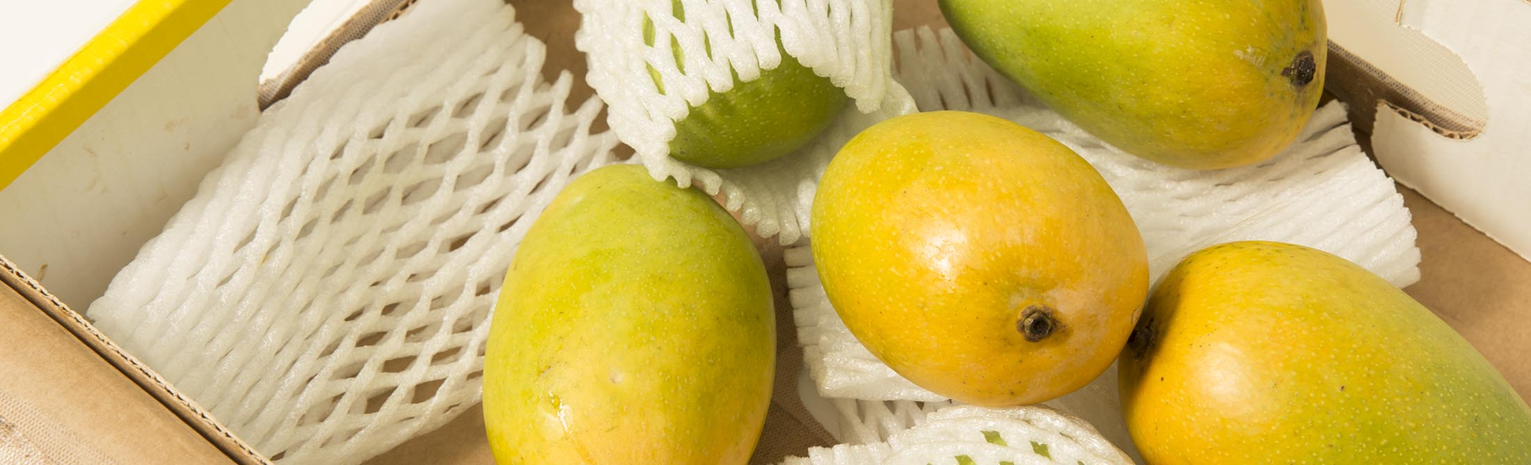 The Best Mangoes In World Are Now Season Kesar From India Bloomberg