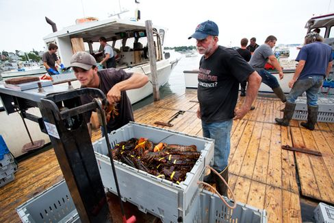Got Lobster? Maine to Give Cheap Crustaceans a Marketing Makeover
