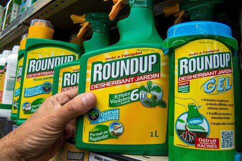 Monsanto's 'Roundup' pesticide.
