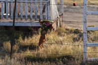 relates to Stars Stunned By 'Mismanaged Set' in Fatal Prop-gun Shooting
