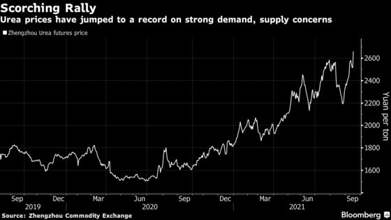 Food Prices Poised to Surge With Fertilizer at Highest in Years