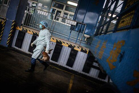 H7N9 Flu Virus