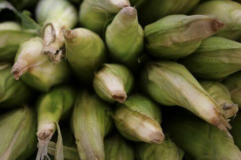 World Corn Crop Seen Falling as Grains Council Reverses Forecast