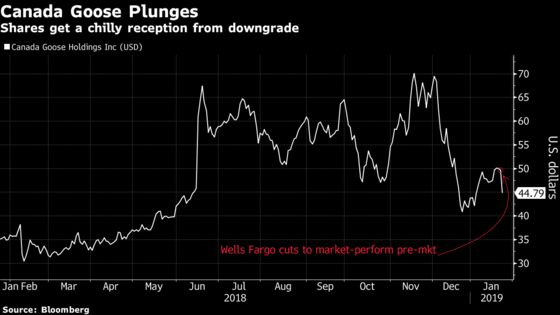 Canada Goose Tumbles Most in 11 Months After Downgrade on Value