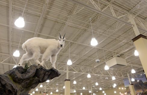 A taxidermy mountain goat is one of several taxidermy animals on display at the Cabela's store in Thornton, Colo.