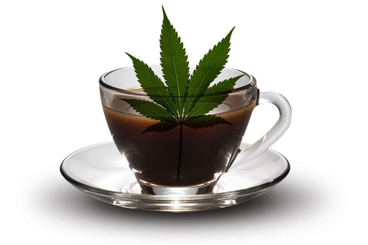 Bulletproof Coffee Careers