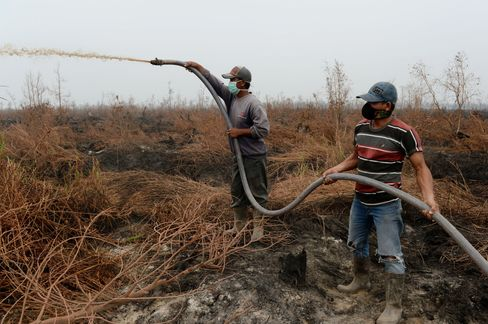 Villagers work to put out a forest fire in South Sumatra.