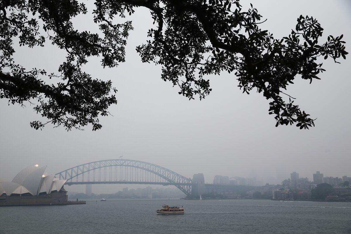 Choking Haze Is Turning Sydney Into the World's Laboratory