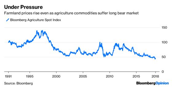 Bull Market Bashers Can't Cry Complacency