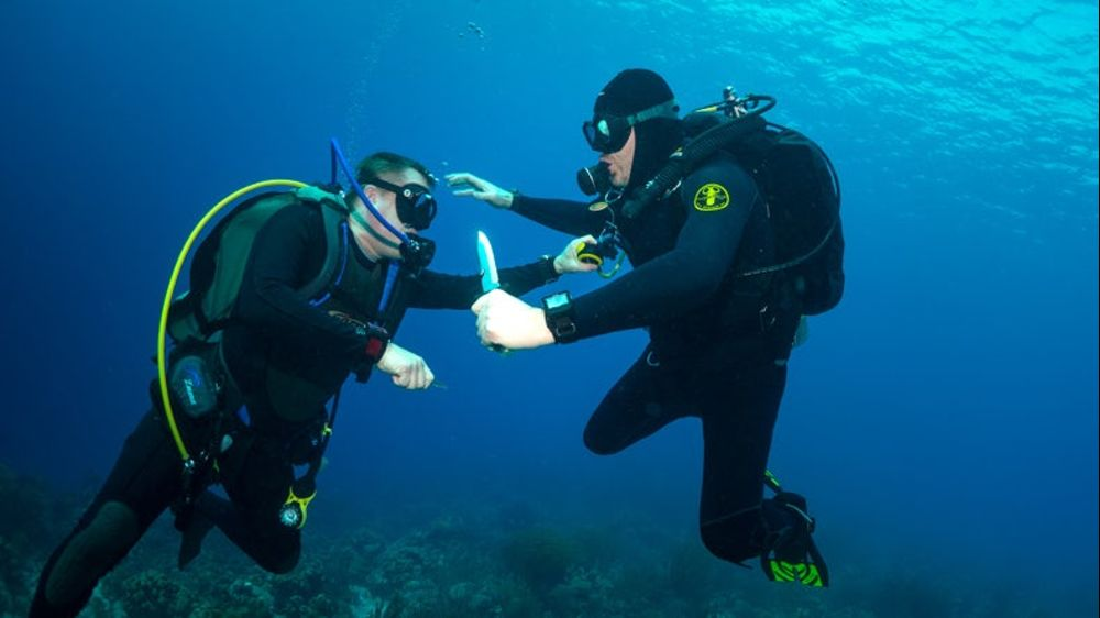 Seven Dive Watch Myths Debunked
